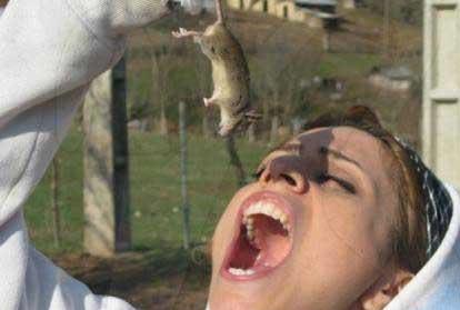 خوردن موش توسط دختر ایرانی