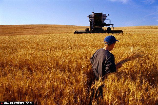 قیمت تضمینی در بورس کالا؛ به نفع کشاورز و دولت و عامل کاهش دلالی در بازار