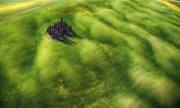 3. امواج سبز | برنده مقام دوم در بخش عکاسی علاقه مندان به زیبایی