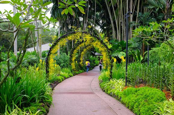 اين امكان در اختيار شما قرار داده شده كه تور يك روزه اي را بر فراز كشتيهاي كروز تجربه كنيد. قايق سواري با قايقهاي محلي در مسير رودخانه ي سنگاپور يكي از فوقالعاده ترين تور طبيعت گردي در اين شهر را برايتان رقم مي زند. با اکسپرس مونوریلها از شهر به سمت ساحل بروید. کرایه تاکسی ها در سنگاپور ارزان است میتوانید به راحتی با تاکسی در طول شهر جا به جا شوید. اما میتوان از اتوبوسهای توریستي هم بهره گرفت. البته پیاده روی در شهر با یک راهنمای محلی و يا سوار بر کالسکه های دوچرخه ای که trishaw  نام دارند هم لذتي خاص را برايتان به همراه خواهد داشت